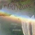 Беларусы Partyzone упали и взлетели