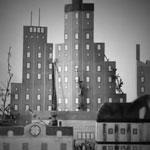 Метал-клипы мая: Korn, Gojira и другие