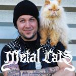 Ми-ми-ми: metal-кумиры и их котики + фото